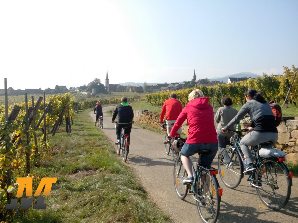 visiter découvrir strasbourg alsace vélo course pied